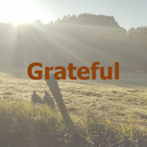 World GratitudeDay